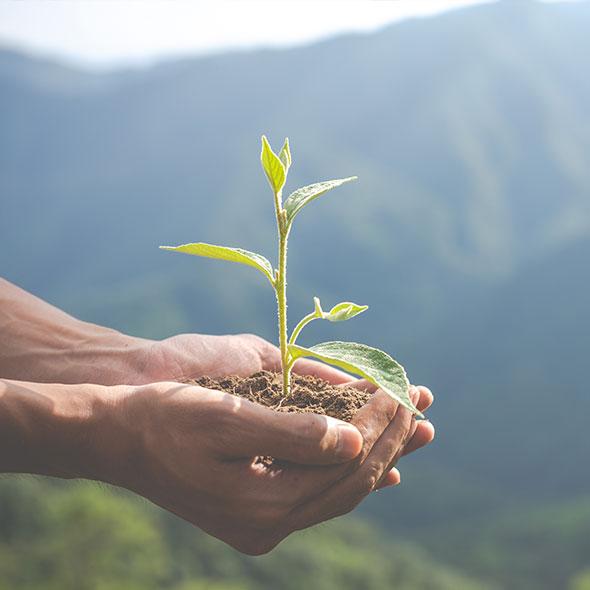 Благоприятен для окружающей среды и здоровья